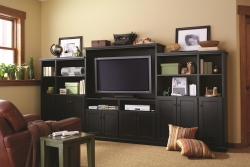 Custom Entertainment Unit with TV
