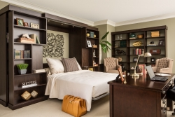 Sliding Bookcase Murphy Bed Expanded