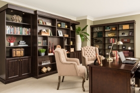 Sliding Bookcase Murphy Bed Closed up